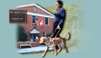 Welcome To Shore Service Dogs Types Of Assistance Dog Training